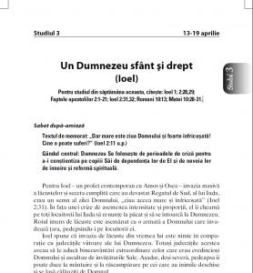 intercer-scoalasabat-studiul3-trim2-2013