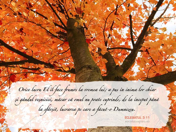Wallpaper săptămânal – Eclesiastul 3:11 (Revista Re:spiro)