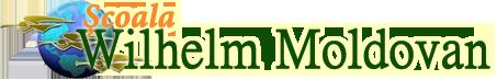 logo-scoalawmoldovan.ro