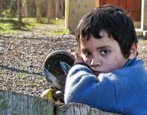 Doneaza alimente pentru familii sărace, mame văduve și copii orfani cu ocazia Sarbatorilor de Iarna